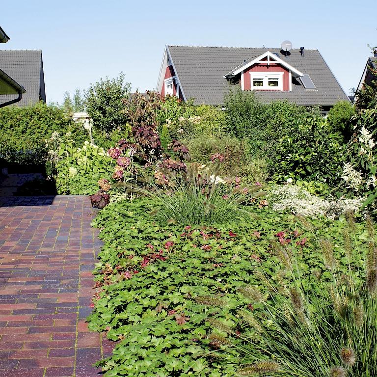 Gro stauden f r den garten und landschaftsbau harries - Garten und landschaftsbau st ingbert ...