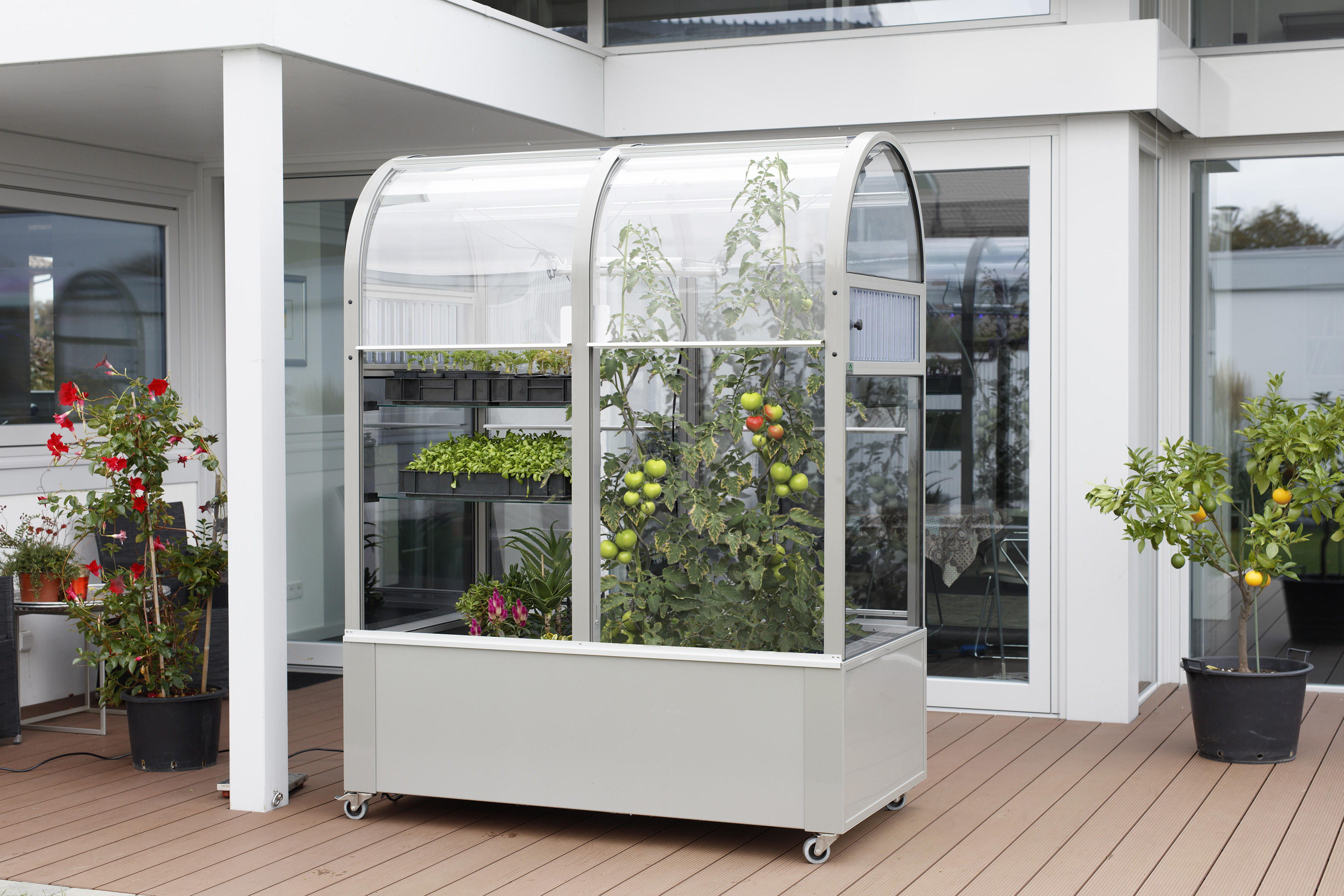 urban gardening mit dem neuen balkon gew chshaus terra harries plantdesign. Black Bedroom Furniture Sets. Home Design Ideas